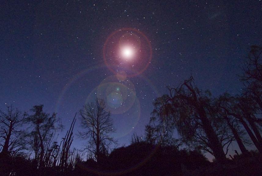 supernova in the night sky - photo #8