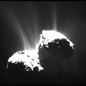 Comet_activity_22_November_2014