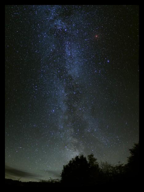 cygnus-supernova-2s